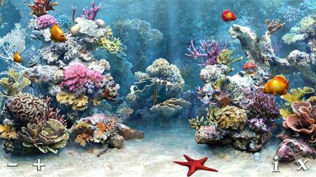 My Aquarium.jpg