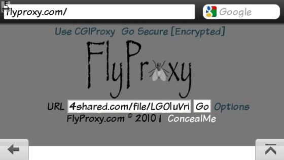 Fly5.jpg